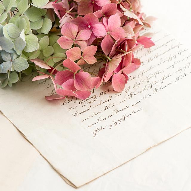 結婚式が終わったら お礼状はどう書く 文例もご紹介 結婚ラジオ
